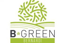 bernardi logo b green